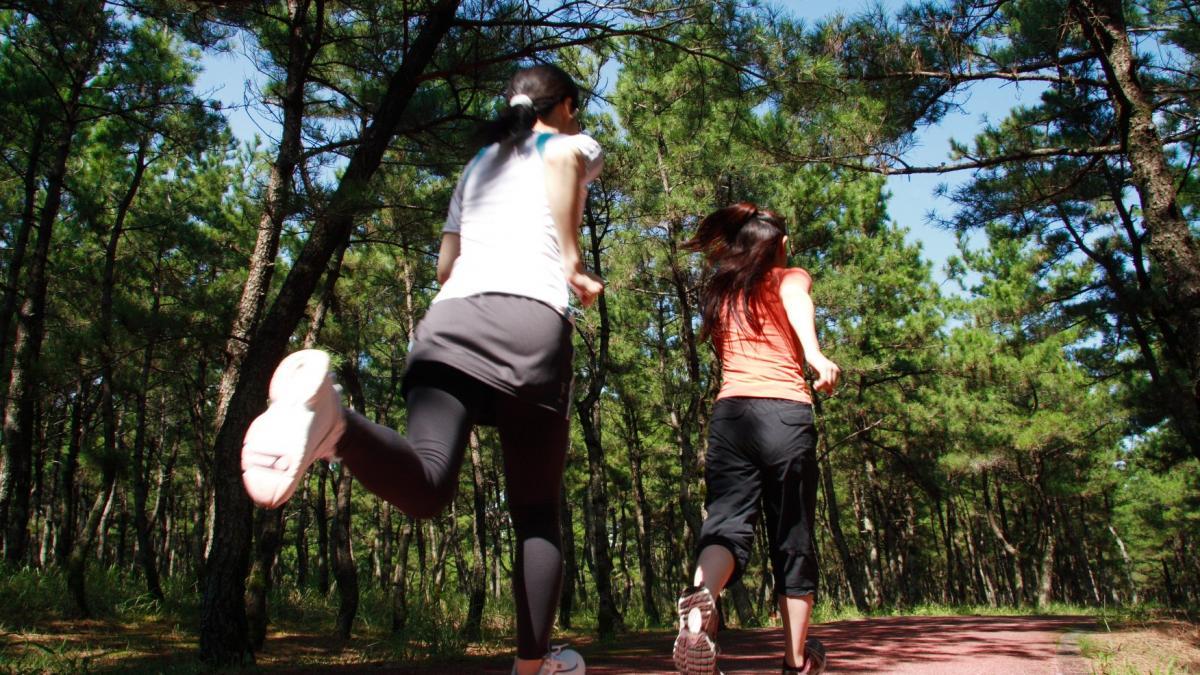 松林の練習コース