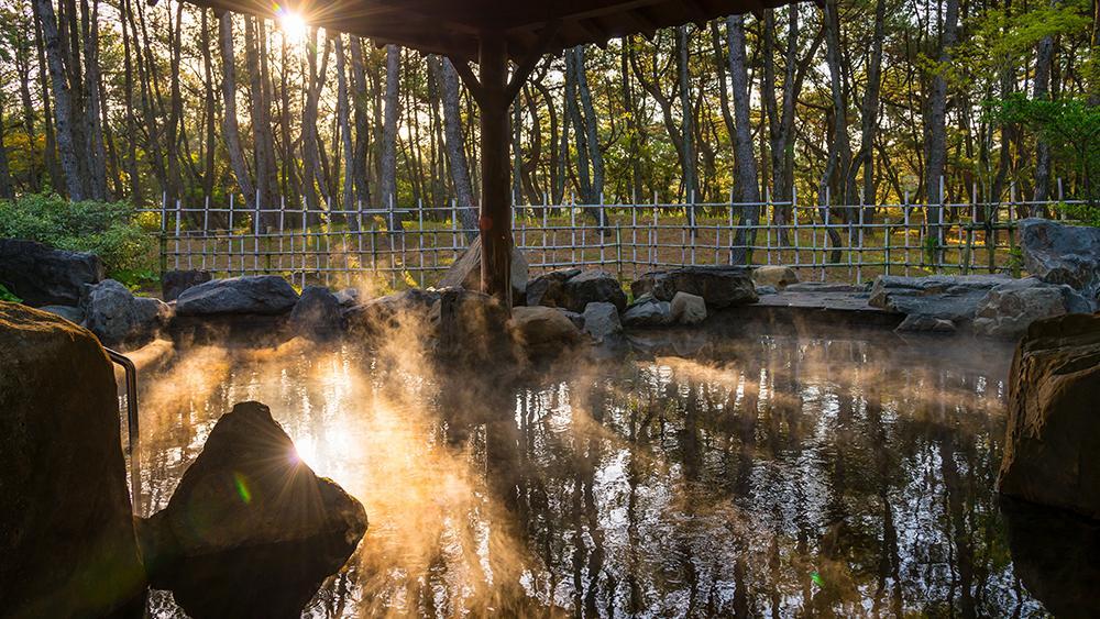 美人の湯 松泉宮