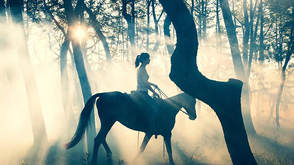 シーガイア乗馬クラブ「UMAIRU」で乗馬体験