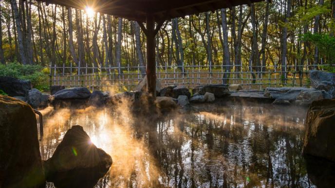 ミネラル豊富な美人の湯「松泉宮」
