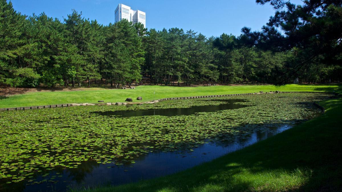 市民の森&みそぎ池