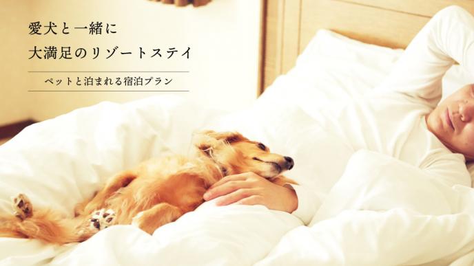 ペットと泊まれるリゾート