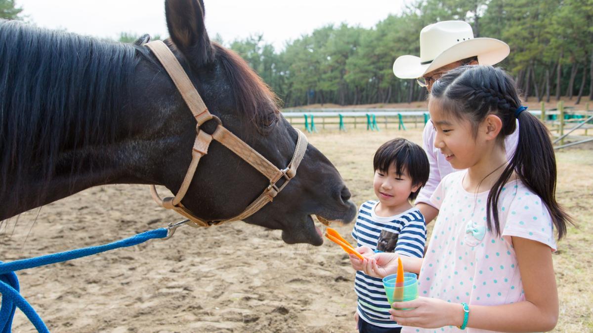シーガイアの夏休み2019はじめての親子で乗馬体験1