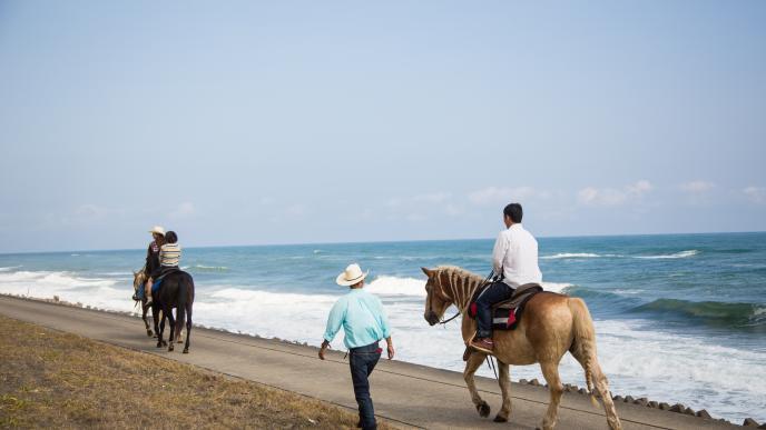 海辺の乗馬